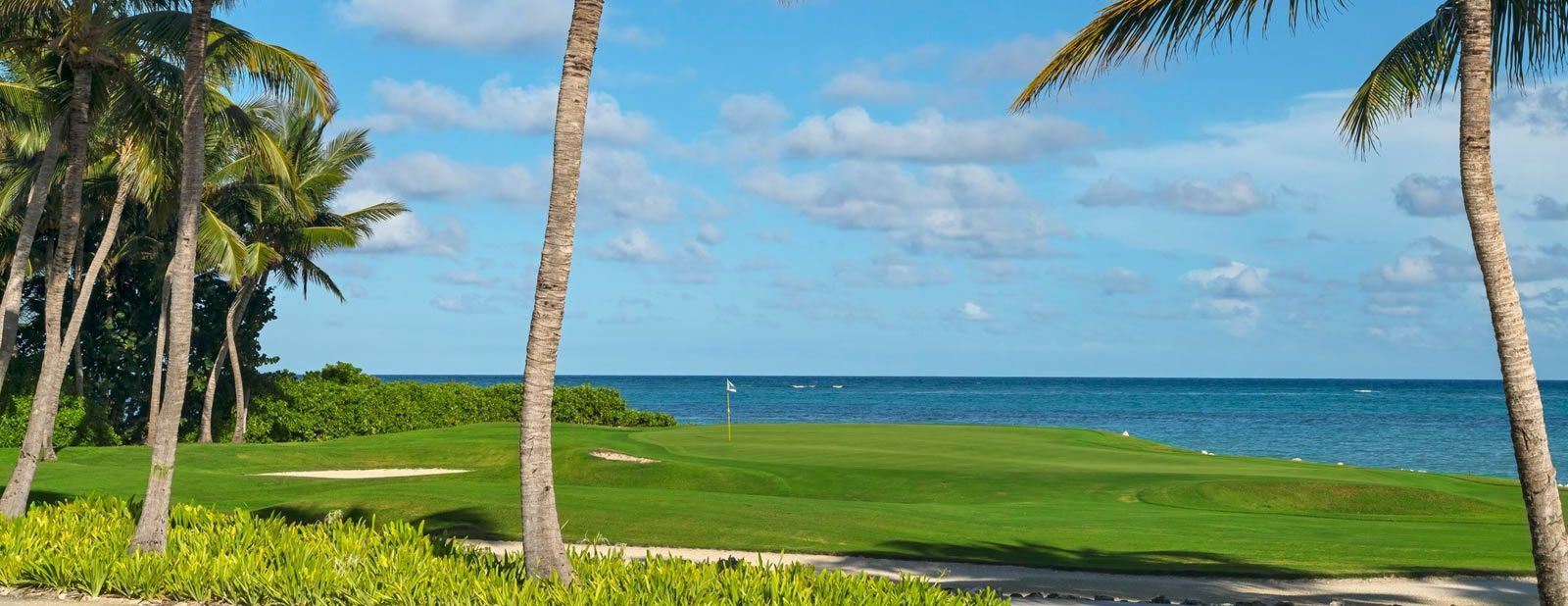 Westin Puntacana Resort & Club - Golf