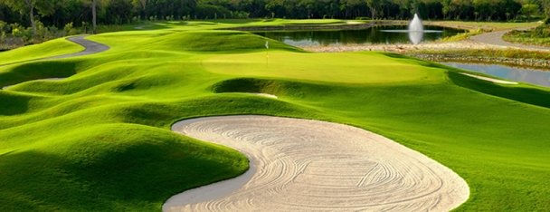 The Westin Puntacana Resort & Club - Golf